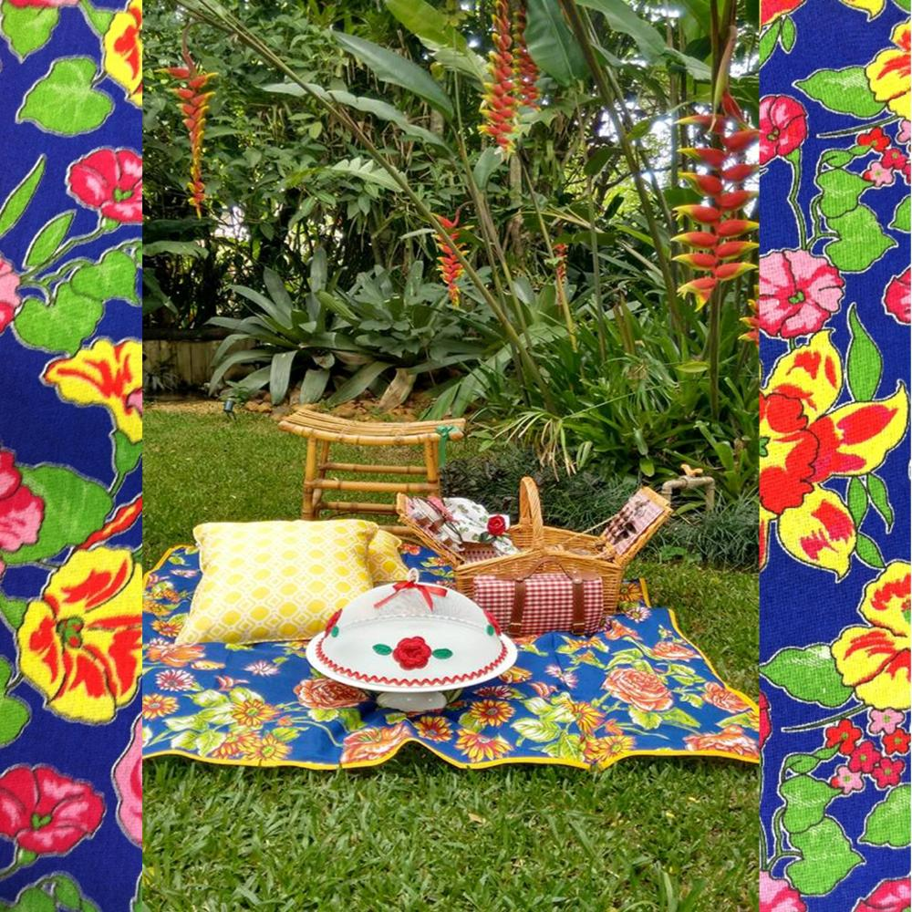 chita picnic